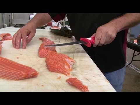 HOW-TO FILLET SALMON & ROCKFISH WITH THE NEW 7