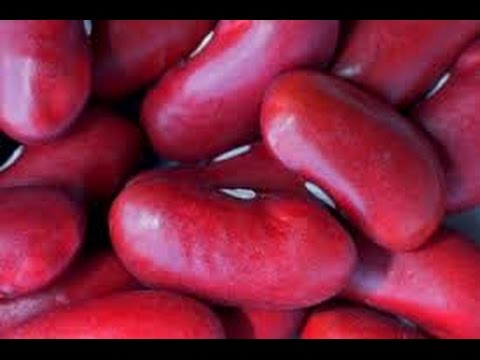 Top 10 Benefits of Kidney beans or Rajma