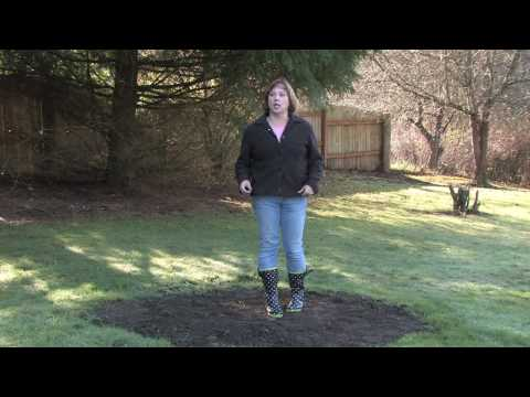 Gardening Tips & Tricks : How to Fix Poor Soil Drainage
