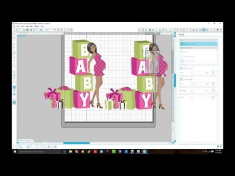 How to take the white backgorund out of image using Silhouette Design Studio Software