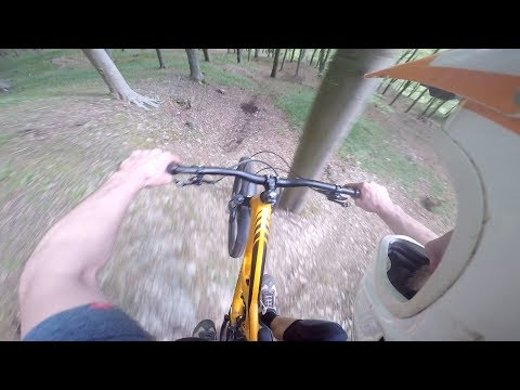 GETTING CLOSE TO THE TREES ON THE MTB
