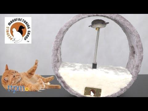 Vortex-M Teaser from PetPals