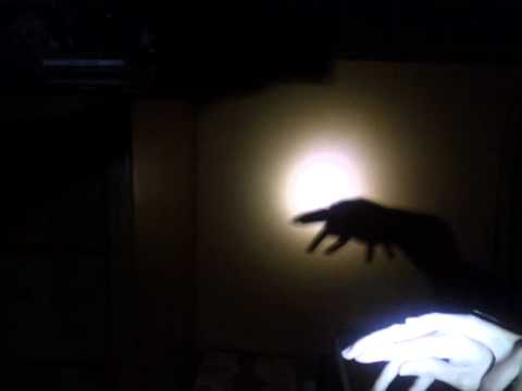 Turtle shadow puppet