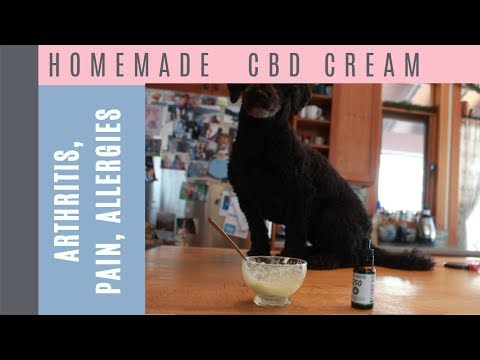 Homemade CBD Cream for Dogs and Cats