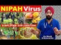 ALERT: NIPAH VIRUS: How to Protect Yourself | Simplified (HINDI) by Dr.Education