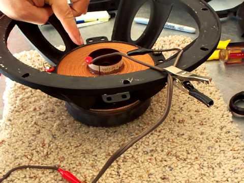 Testing a Speaker's Polarity, or voice coil polarity