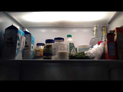 Brutus Bombs My Fridge Cleaning Video!
