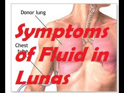 Symptoms of Fluid in Lungs