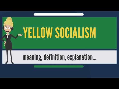 What is YELLOW SOCIALISM? What does YELLOW SOCIALISM mean? YELLOW SOCIALISM meaning & explanation