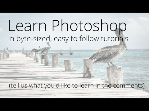 Photoshop Tutorials for Beginners - What Would You Like to Learn?