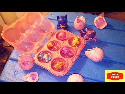 Paw Patrol & Mashems & Hatchimals collEGGtibles unboxing video | Toys Voice