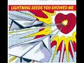 Download  The Lightning Seeds - You Showed Me (reordered) MP3,3GP,MP4