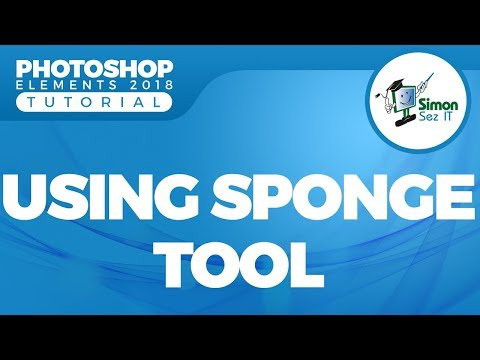 How to Use the Sponge Tool in Adobe Photoshop Elements 2018