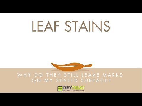 Porous Materials - Common Problems: Leaf Stains