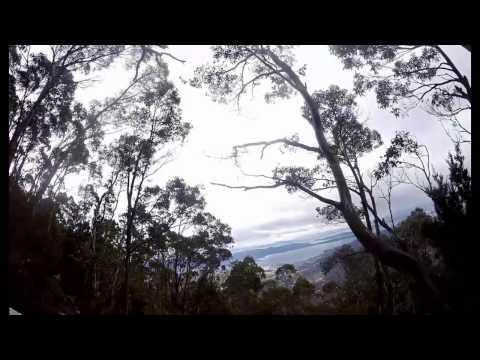 Mount Wellington summit + Organ Pipes bushwalk