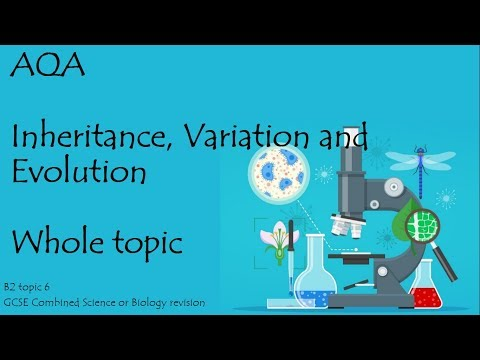 The whole of AQA INHERITANCE, VARIATION and EVOLUTION. 9-1 GCSE Biology combined science for paper 2