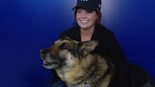 Marine Who Fought to Adopt K-9 Partner in Iraq Is Now a Movie,