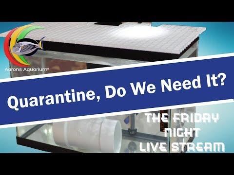 Quarantine, Do We Need It?
