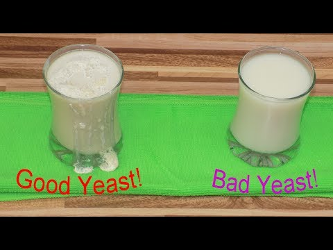 Good Yeast, Bad Yeast - The experiment