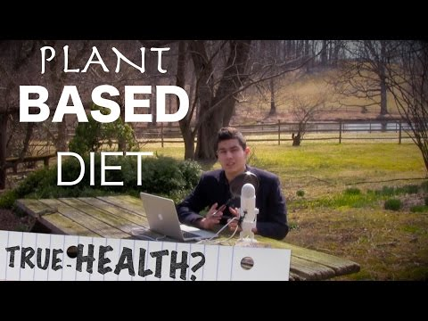 Change Your Food Change Your Life - Is Plant Based Diet Healthy? - Weight  Energy  Happiness