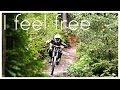 DOWNHILL Movie Bikepark Schöneck 2014 - I Feel Free