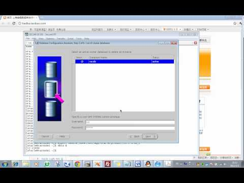 08.01_Oracle_10gR2_RAC_8.1 Remove the Oracle Instance on the Node to be Deleted_20120202.flv
