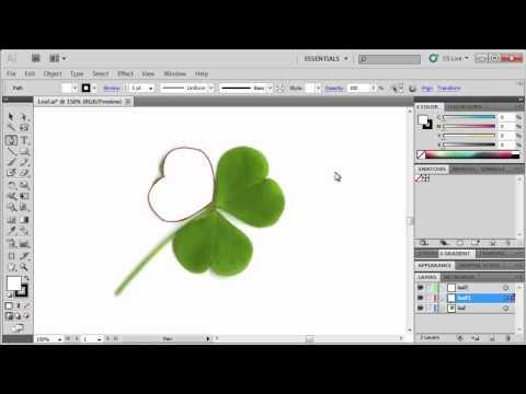 1.3 Using the Pen Tool: Adobe Illustrator CS5