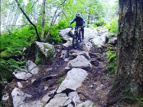 Scotland Mountain Bike Trip - Dunkeld, Aviemore and The Highlands