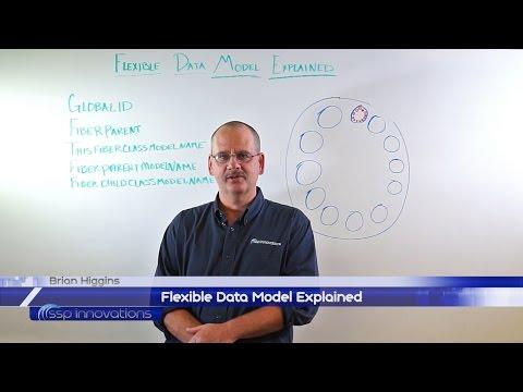 Flexible Data Model Explained