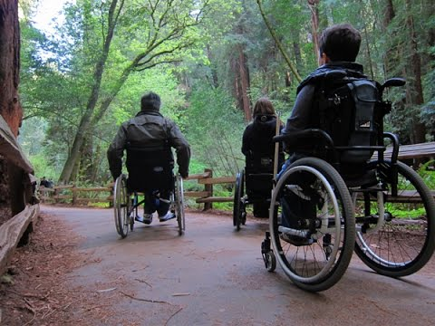 San Francisco Muir Woods National Monument: Wheelchair Access Tips