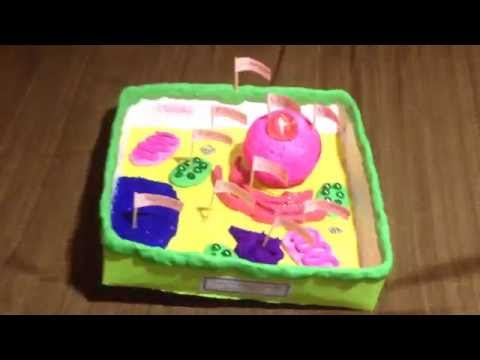 My STEAM@Home - 3-D Plant Cell Model