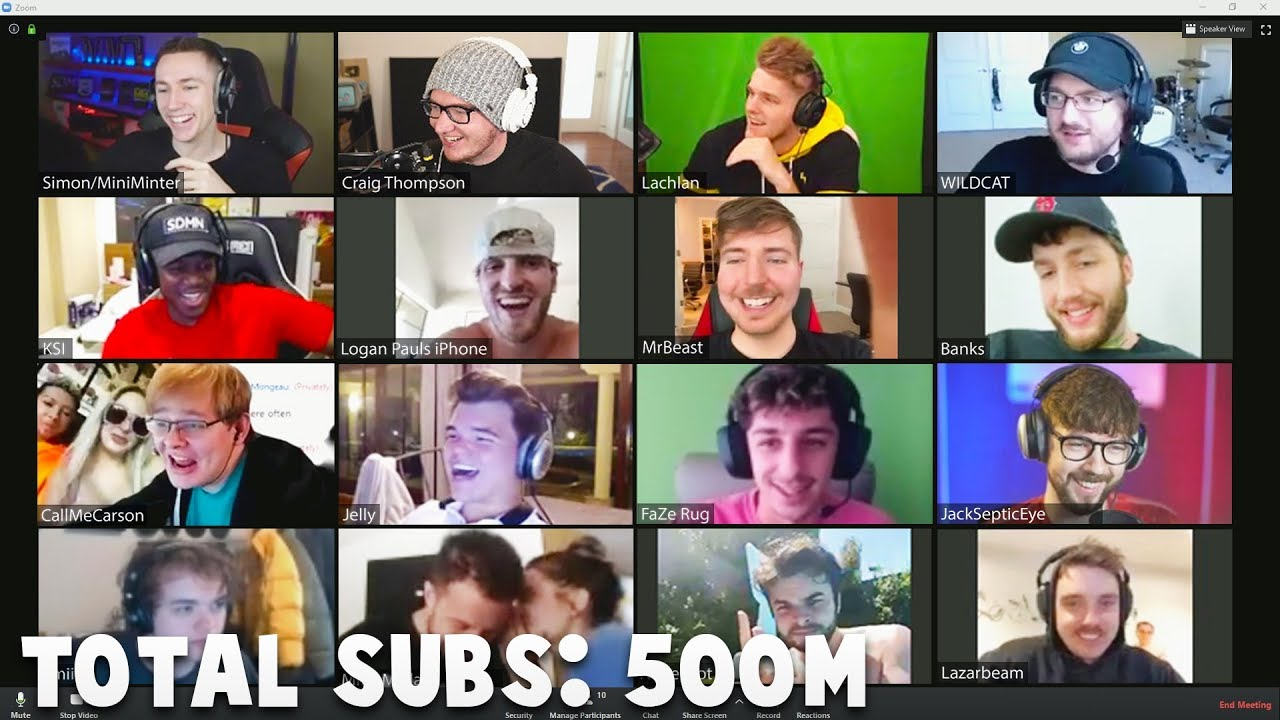 I Got All Your Favorite YouTubers In A Zoom Call Together
