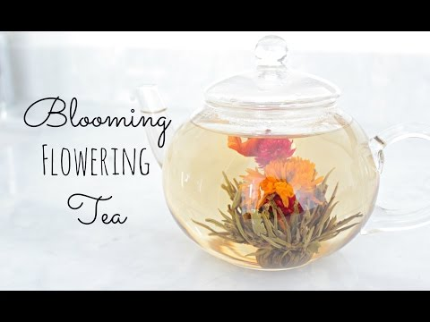 Blooming Tea |Timelapse | Mother's Day Gift Idea + Mini Giveaway