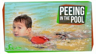 why peeing in the pool could be dangerous disinfection byproducts