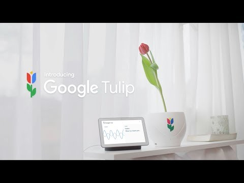 Xxx Mp4 Introducing Google Tulip 3gp Sex