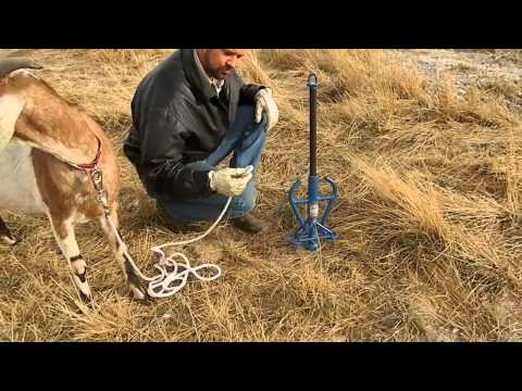 ALL-TIE Anchor Post for Goat - innovative animal tie out system - by Good N Useful