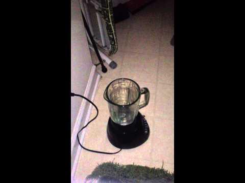 Wint-O Green Lifesaver Triboluminescence
