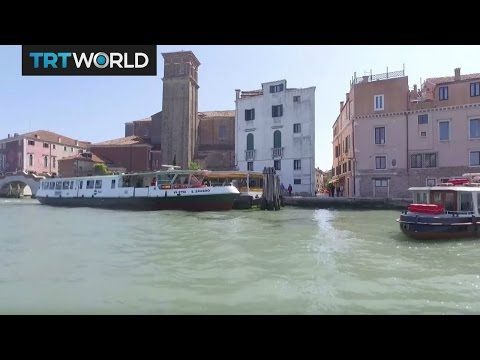 Venice Biennale 2017   Festivals   Showcase