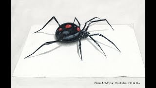 Download How to Draw a Black Widow Spider in 3D - Narrated Video