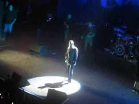 Morrissey Palm Vegas (Please Please Please)