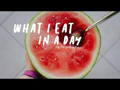 WHAT I ATE IN A DAY #26//vegan travels