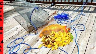 Download BANANA FISH TRAP! Video