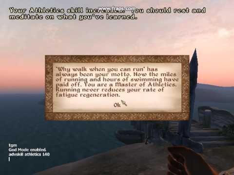 How to Add Skill Points in Oblivion PC (Cheat)