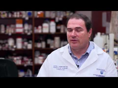 Dr. Robertson on melanoma research and Silencer® Select siRNA