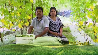 MEDICINAL PLANTS - NATTUVARAMBU | 9 FEBRUARY 2019 | PART 2 | JANAM