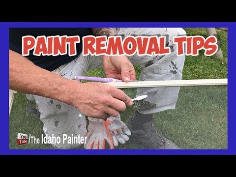 Cleaning Window Screens.  Paint REMOVAL Tips.