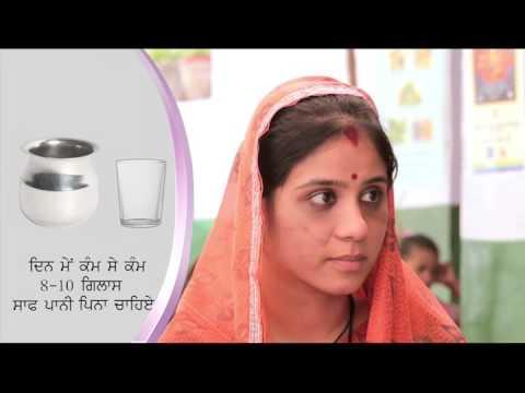 Diet during Pregnancy - Punjabi
