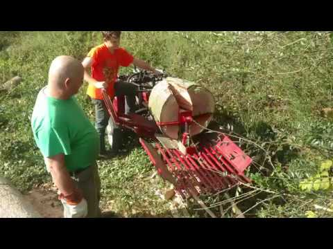 Extreme woodsplitting with Timber Wolf splitter