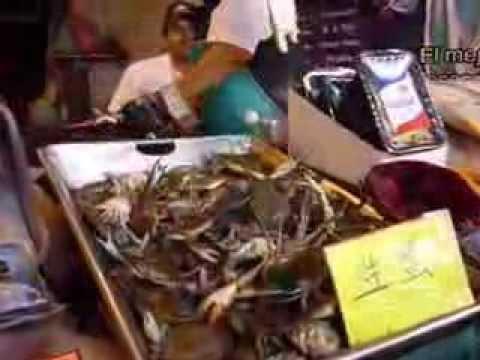 Blue crabs alive at Mexico City Iztapalapa Central Market