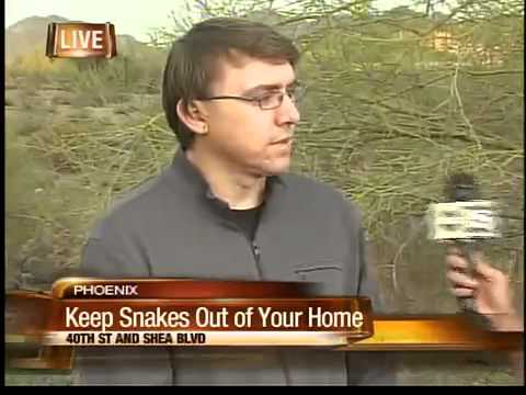 How to deter snakes from your home